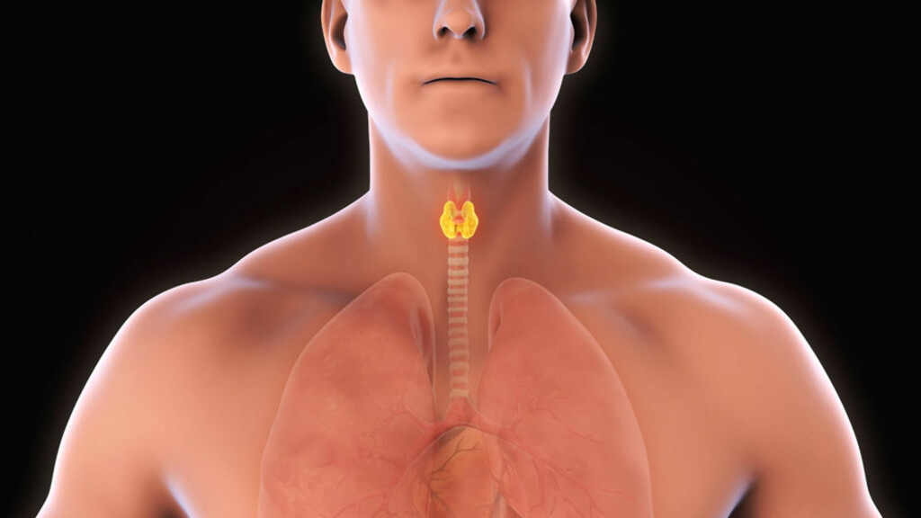 HYPOTYREOSE: Det er nedsatt funksjon i skjoldbruskkjertelen forårsaker hypotyreose. Foto: NTB Scanpix/Shutterstock