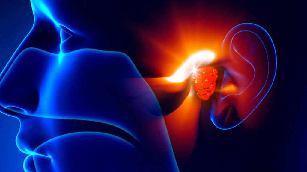 FORSTØRRET FALSK MANDEL: Din falske mandel er plassert langt bak i svelget, og bidrar til å bekjempe infeksjoner i barndomsårene. Men noen ganger kan den falske mandelen vokse og bli et problem. Foto: NTB Scanpix/Shutterstock