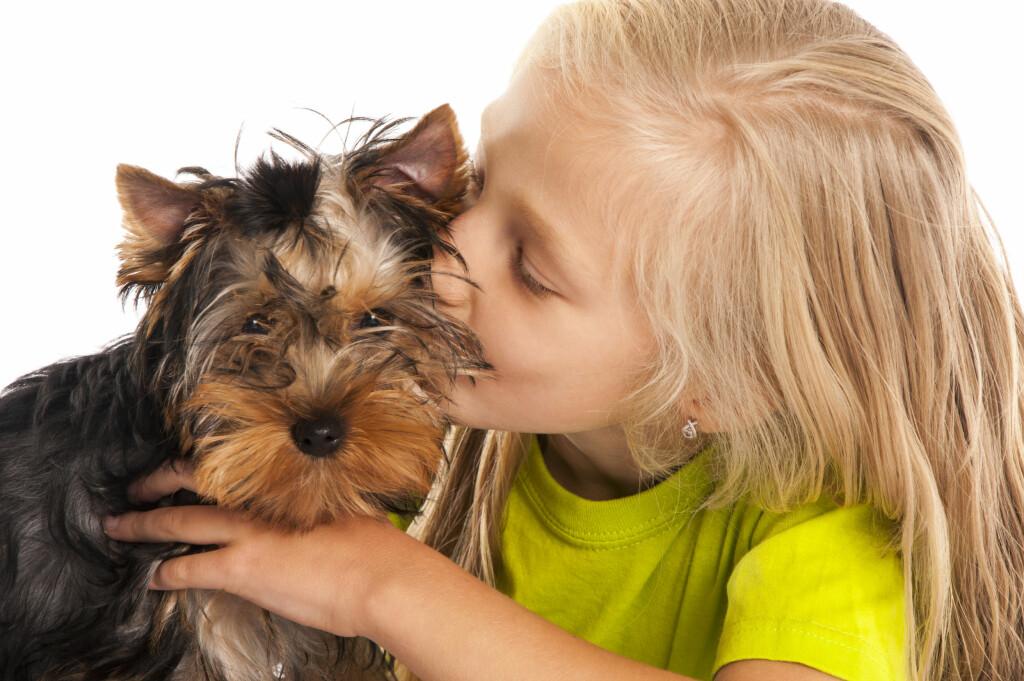 Kan bli et problem: Mange barn ønsker seg kjæledyr, til tross for allergien. Foto: NTB Scanpix