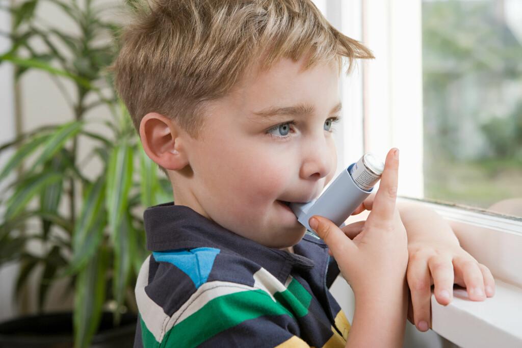 FLERE BARN MED ASTMA: Forekomsten av astma blant barn har økt i løpet av de siste tiårene. Uten at noen med sikkerhet vet hvorfor.  Foto: NTB/Scanpix