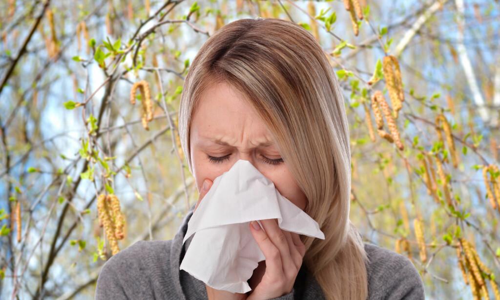 RENNENDE NESE OG KLØENDE ØYNE: Vanlige symptomer på pollenallergi. Foto: NTB Scanpix / Shutterstock