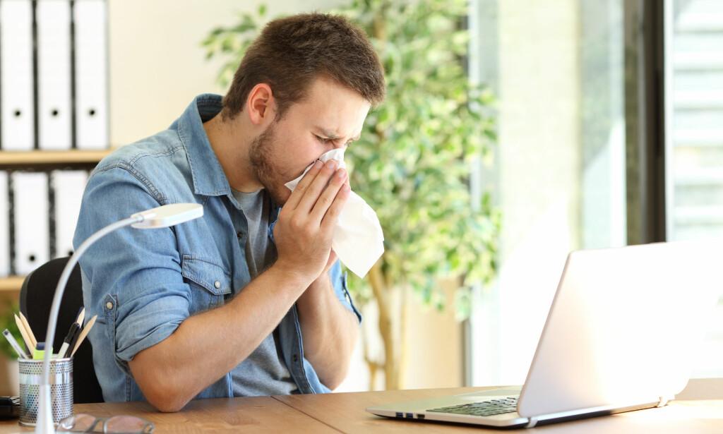 POLLENALLERGI: Det er ikke alle som føler seg bedre selv om de bruker allergimedisiner. Foto: Foto: NTB Scanpix