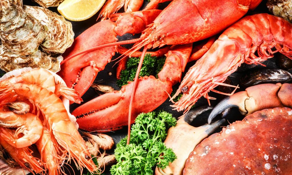ALLERGISK REAKSJON PÅ SKALLDYR: Hvis man reagerer allergisk når man spiser reker, scampi, krabbe, kreps, hummer, blåskjell eller kamskjell har man skalldyrallergi. Foto: NTB Scanpix / Shutterstock