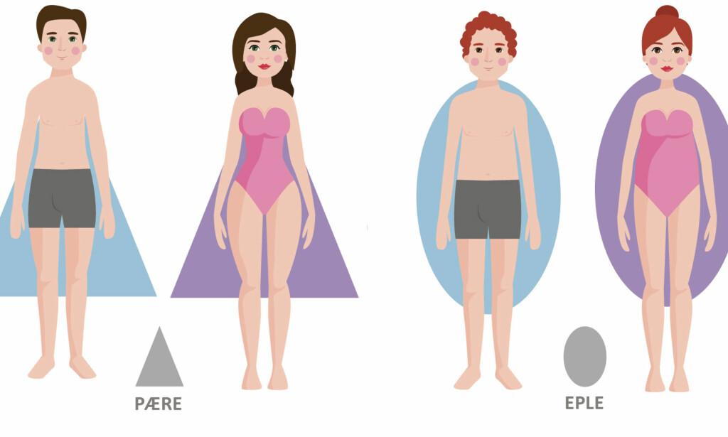 KROPPSFASONG: Hvilken kroppsfasong du har kan si noe om helsen din. Vet du hvilken kroppsform som er forbundet med risiko for sykdom? Illustrasjon: NTB Scanpix / Shutterstock
