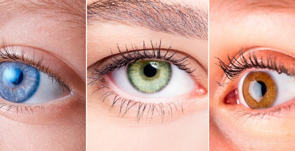 BLÅ, GRØNN ELLER BRUN: Det er ikke så enkelt som mange tror. Er begge dine foreldre blåøyde, kan du likevel få grønne eller brune øyne. Foto: NTB/Shutterstock