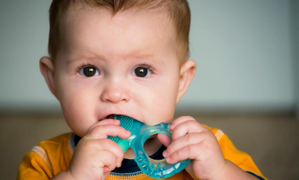 """PUTTER TING I MUNNEN: Alle barn putter ting i munnen for å """"bli kjent"""" med verden.                                FOTO: NTB SCANPIX/Shutterstock"""