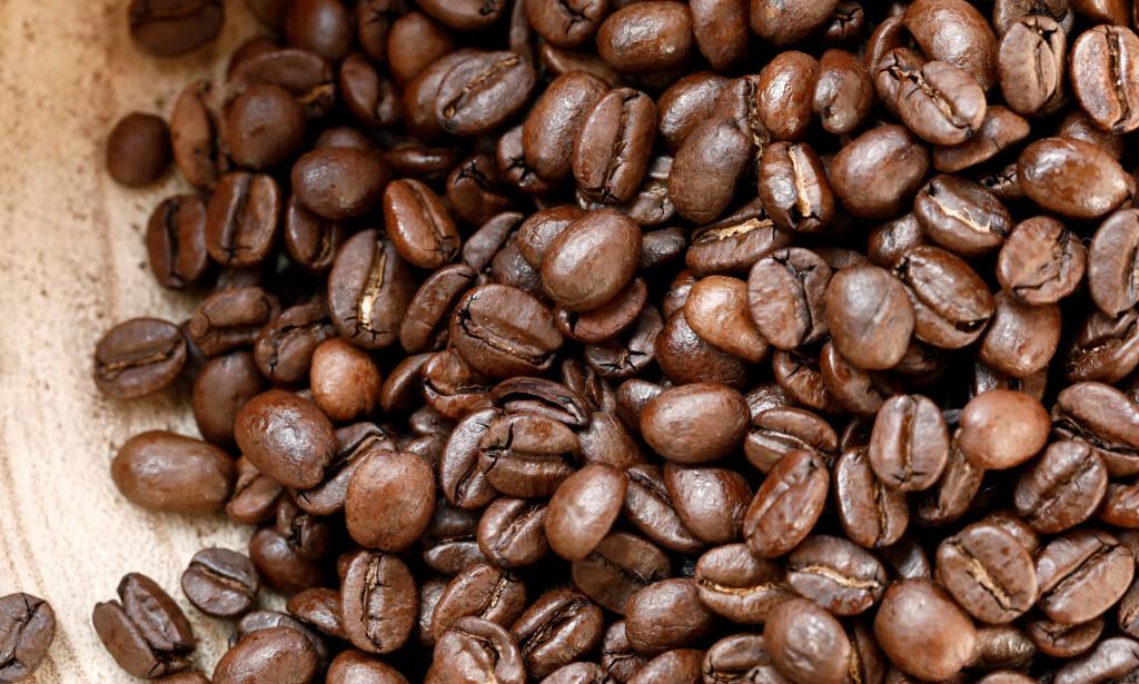 KAFFE FOR HELSA? Kaffe er en drikk laget av brente kaffebønner, som kommer fra kaffeplantens frukt. Foto: NTB Scanpix / Reuters / Benoit Tessier