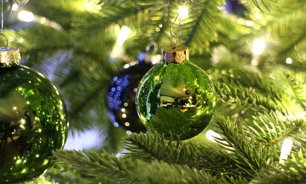 JULETRE: Det er flere faktorer med juletreet som kan gi luftveisplager. Foto: Shutterstock / NTB Scanpix