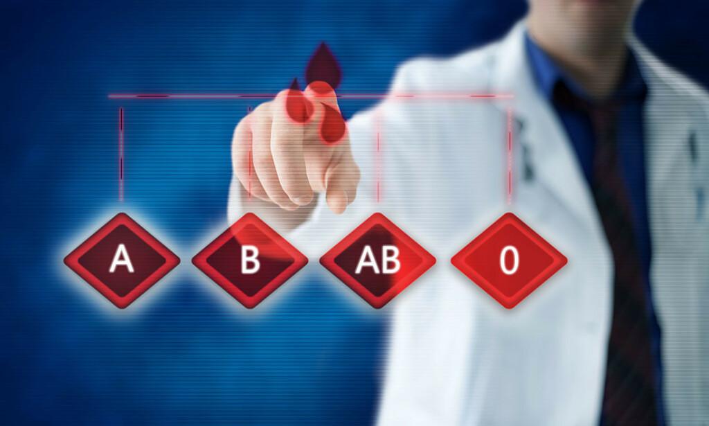 BLODTYPE: Blodtypene deles inn i A, B, AB og 0, og dessuten Rhesus minus eller positiv. Foto: NTB Scanpix/Shutterstock