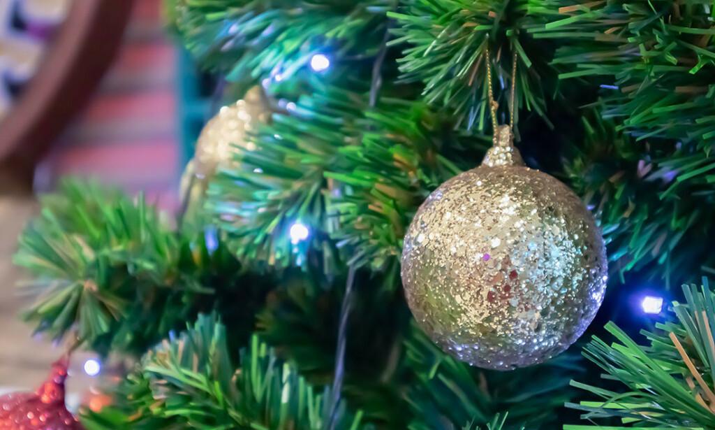MUGGSOPP OG STØV? Juletreet kan skjule kryp som noen er allergiske mot. FOTO: Kwangmoozaa / Shutterstock / NTB