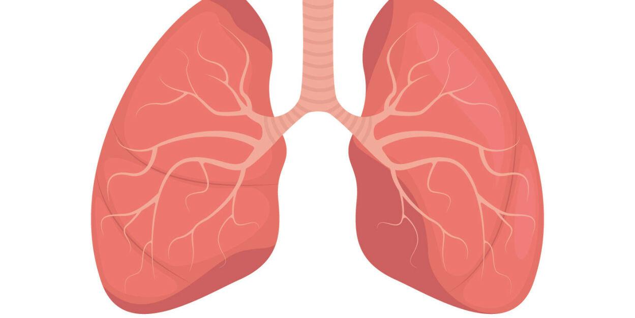 image: Smerter i lungene