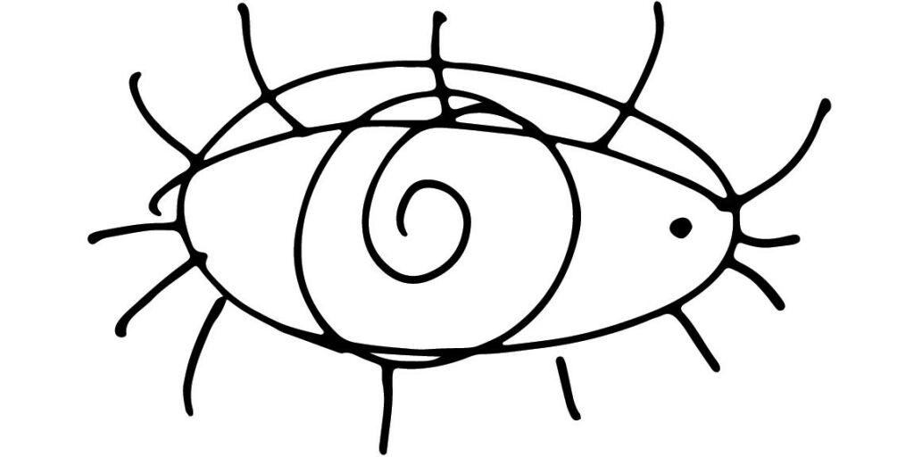 image: Liten prikk i det hvite på øyet. Farlig?