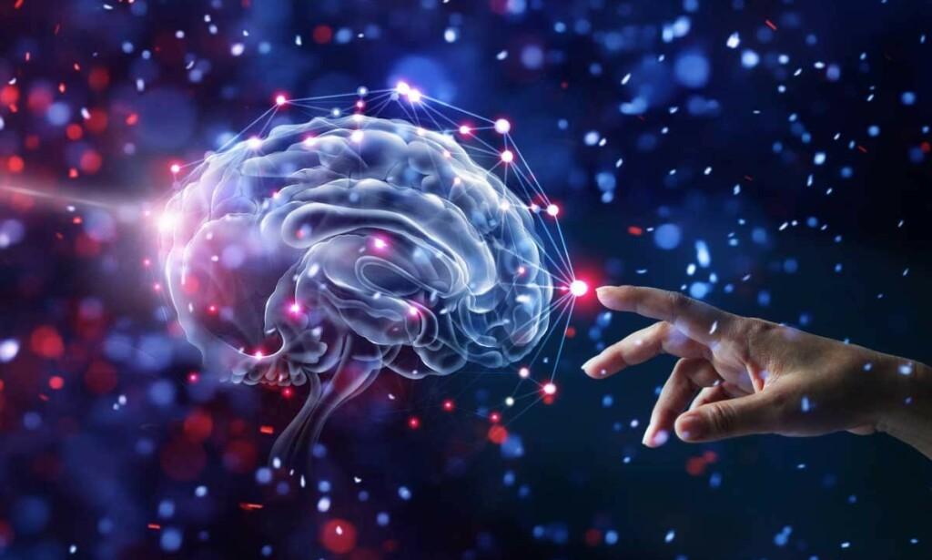 EN HJERNESYKDOM: Hos mennesker med Tourettes syndrom fungerer forbindelsene fra samlinger av nervekjerner til forskjellige deler av hjernebarken annerledes enn hos folk flest. Foto: PopTika / Shutterstock / NTB