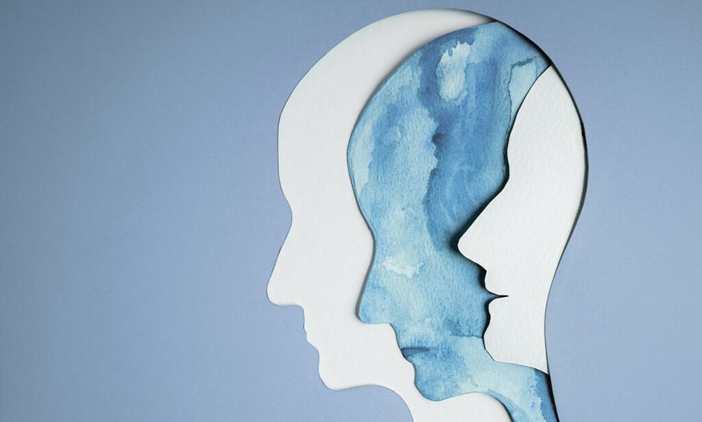 ARVELIG: Familie-, tvilling- og adopsjonsstudier viser at bipolare lidelser er arvelige tilstander. Illustrasjon: Black Salmon / Shutterstock / NTB