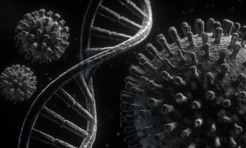 MUTASJONEN MY: Alle virus endres over tid og skaper nye mutasjoner. WHO har lagt til My på lista over mutasjoner man skal overvåke med spesiell interesse. Illustrasjon: macondo / Shutterstock / NTB