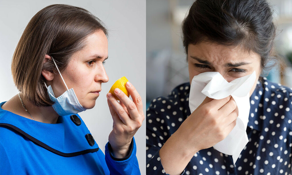 MISTET LUKTESANS OG RENNENDE NESE: Det ene symptomet er oftest forbundet med covid-19 og det andre med vanlig forkjølelse. Foto: Nenad Cavoski / fizkes / Shutterstock / NTB